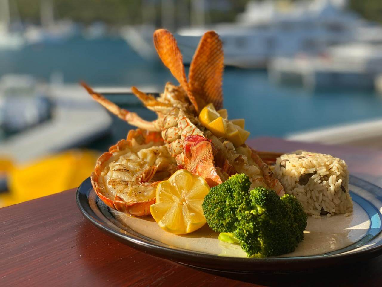 bvi lobster